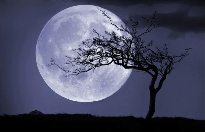 Full moon naming contest